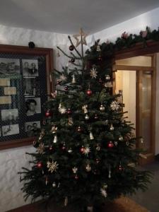 Christbaum Weihnachten 2011